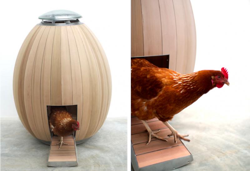 pollaio di design