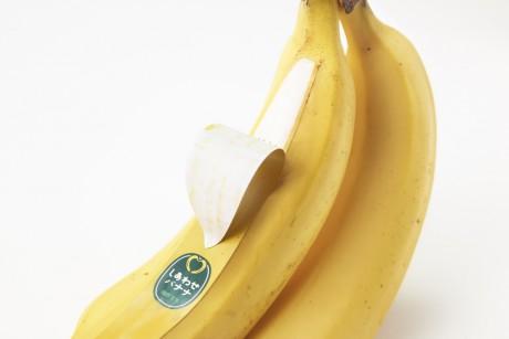 nendo banana packaging