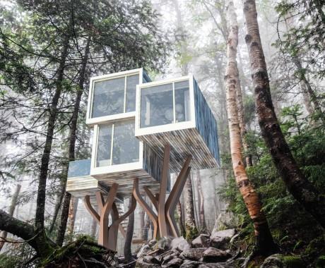 Vi piacerebbe una casa sull'albero? Oggi non è più fantasia!