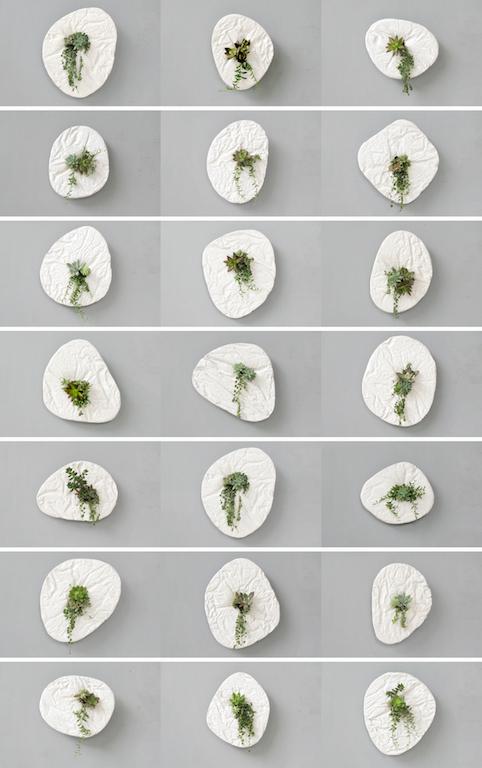 Seed, il vaso in cemento da appendere alla parete