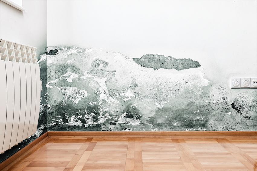 Come difendersi dalla pericolosa umidit sui muri - Macchie di umidita sui muri ...