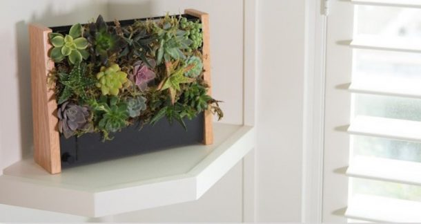 cornice giardino verticale