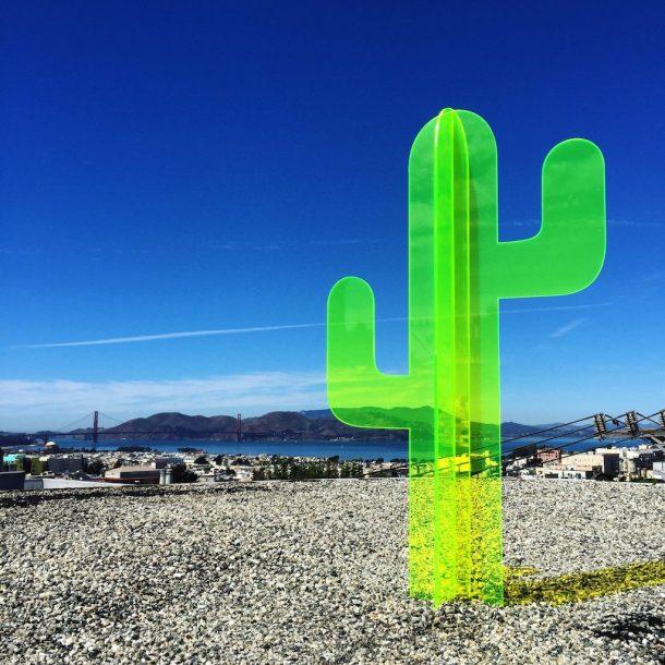 cactus fluorescenti