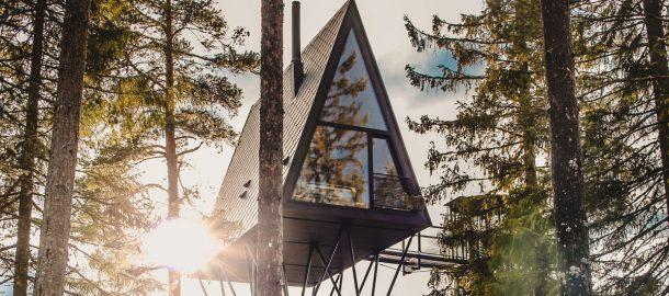 case sugli alberi di design