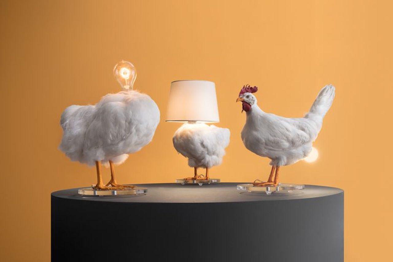 C chi di volatili ne fa lampade da tavolo design street for Lampade da tavolo design famose
