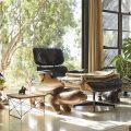 Eames LTR Eucalyptus