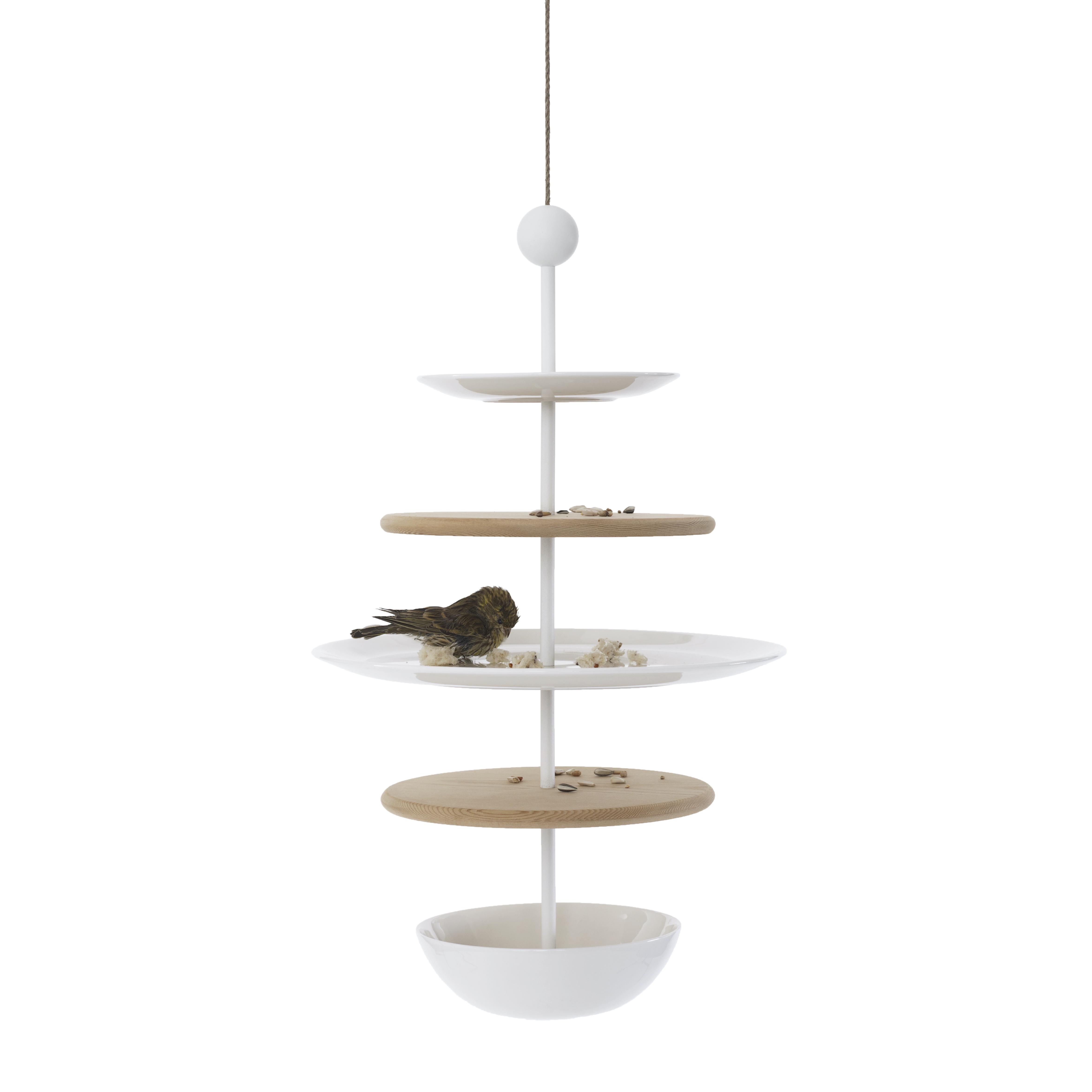Casette di design per uccelli e mangiatoie per uccelli