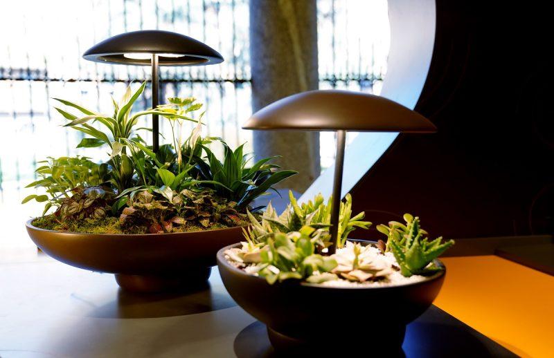 Lampada Garden